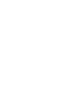 white polygon (big)